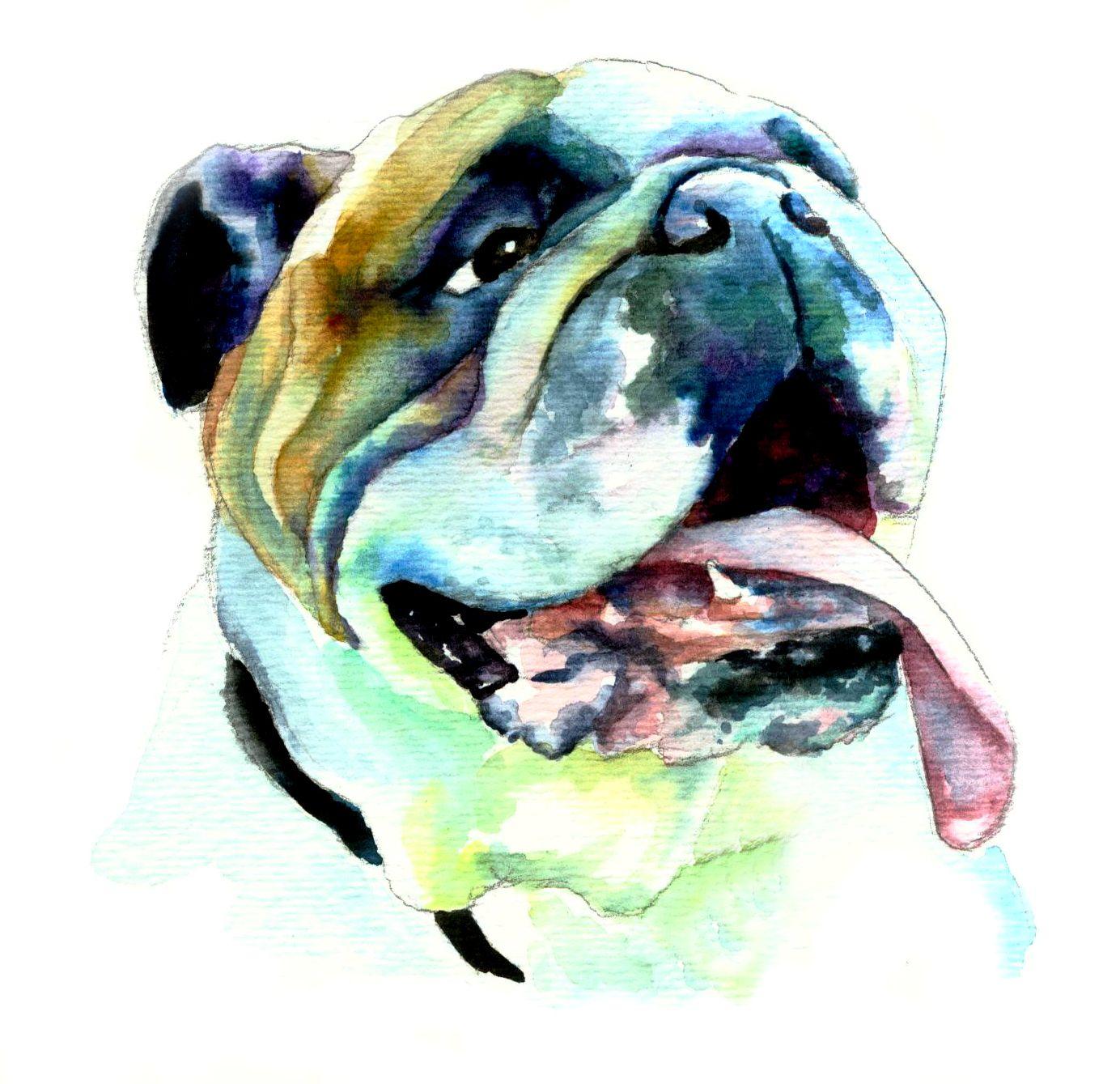 English Bulldog Freckle Face Www Christystudios Com Bulldog Art Bulldog Images Dog Portraits