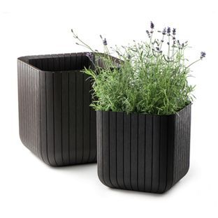 Splendid Buy Keter Cube Planters  Pack Of  At Argoscouk  Your Online  With Hot Buy Keter Cube Planters  Pack Of  At Argoscouk  Your With Agreeable Wilmslow Garden Centre Opening Times Also The Bear Garden Ipswich In Addition Pie Restaurant Covent Garden And Garden Jacksonville As Well As Link Edge Aluminium Garden Edging Additionally Van Hague Garden Centre From Ukpinterestcom With   Hot Buy Keter Cube Planters  Pack Of  At Argoscouk  Your Online  With Agreeable Buy Keter Cube Planters  Pack Of  At Argoscouk  Your And Splendid Wilmslow Garden Centre Opening Times Also The Bear Garden Ipswich In Addition Pie Restaurant Covent Garden From Ukpinterestcom