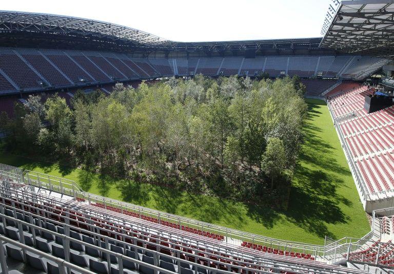 forest stadium in 2020