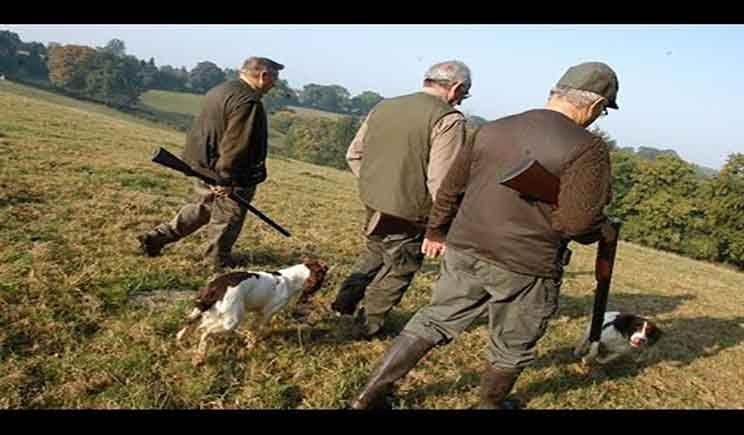 بعيدا عن المزايدات والمحسوبية ينطلق موسم القنص باقليم بني ملال Hunting Hunting Season Animals