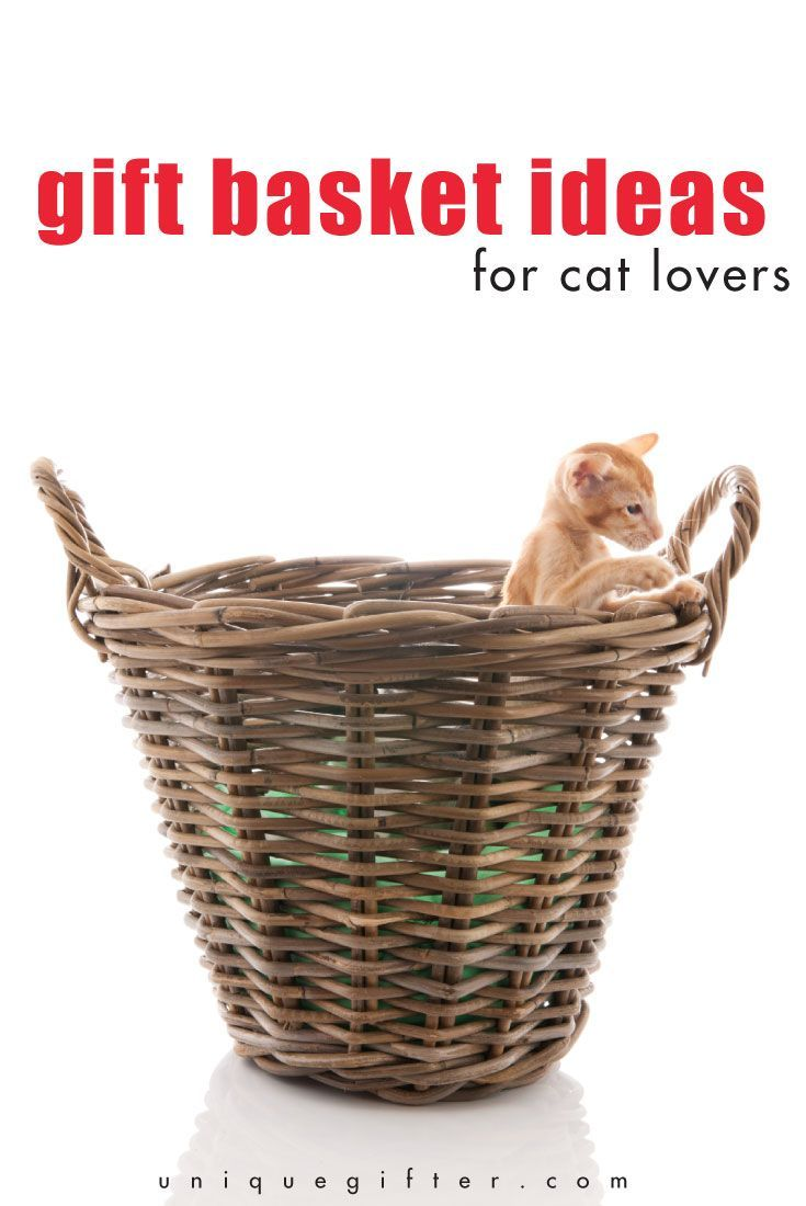 Do You Want To Know How Come Up With The Best Ever Gift Basket Ideas For Cat Lovers Easy Read This Awesome List And Consider Next Birthday Present