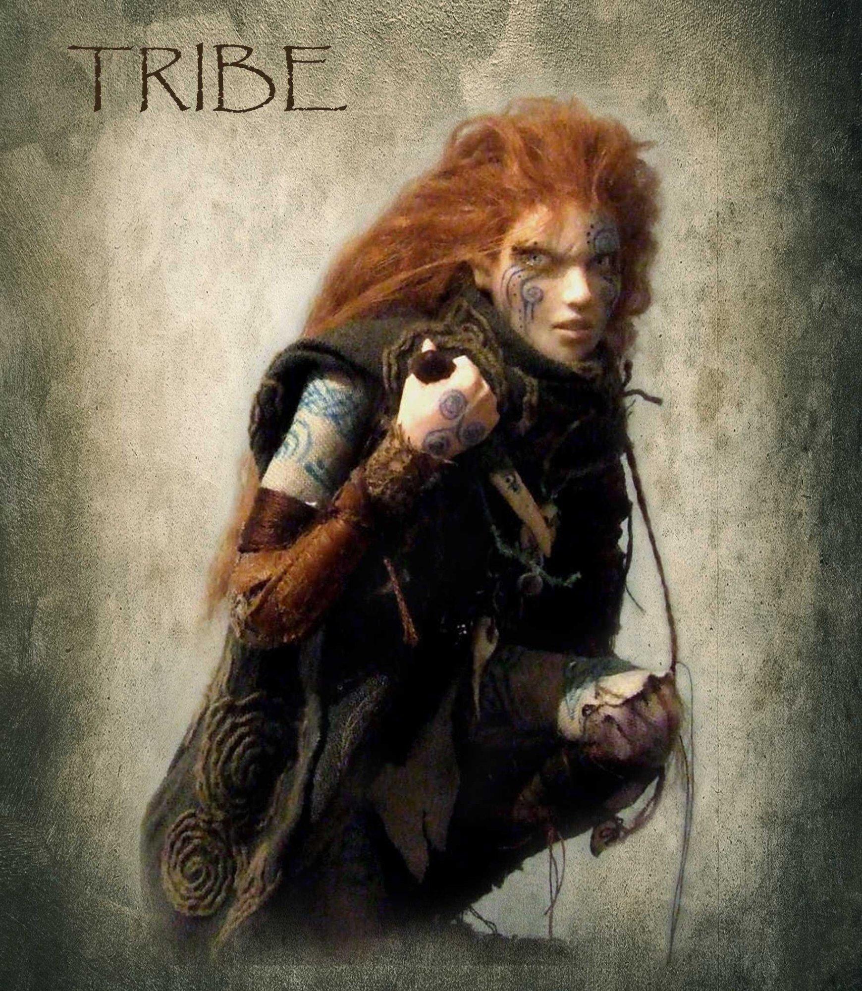 celtic warrior - Google Search   Painting ideas   Pinterest ...