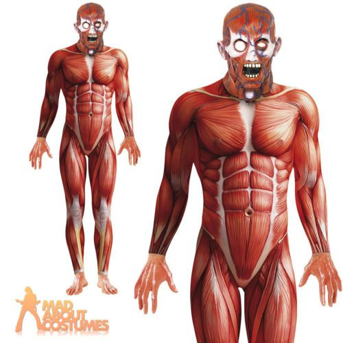 Anatomy Man Costume Halloween Second Skin Fancy Dress Mens Muscle