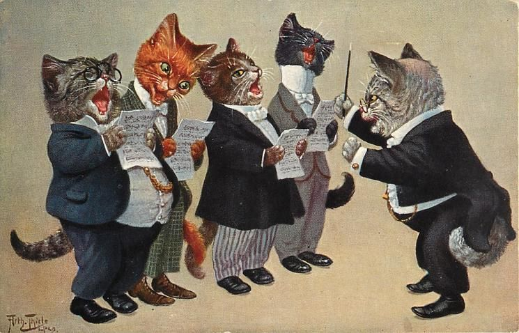 tom cat conducting male voice quartet - TuckDB