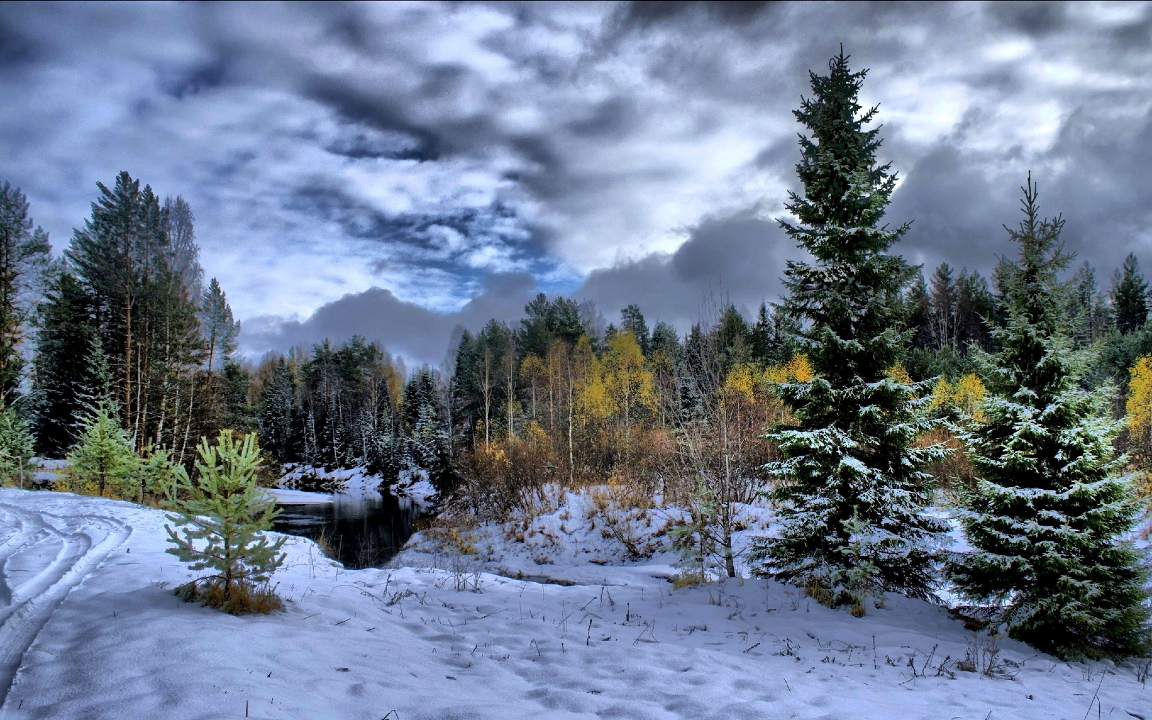 Winter Wallpaper 4k For Mobile Trick In 2020 Winter Scenery Scenery Wallpaper Winter Landscape