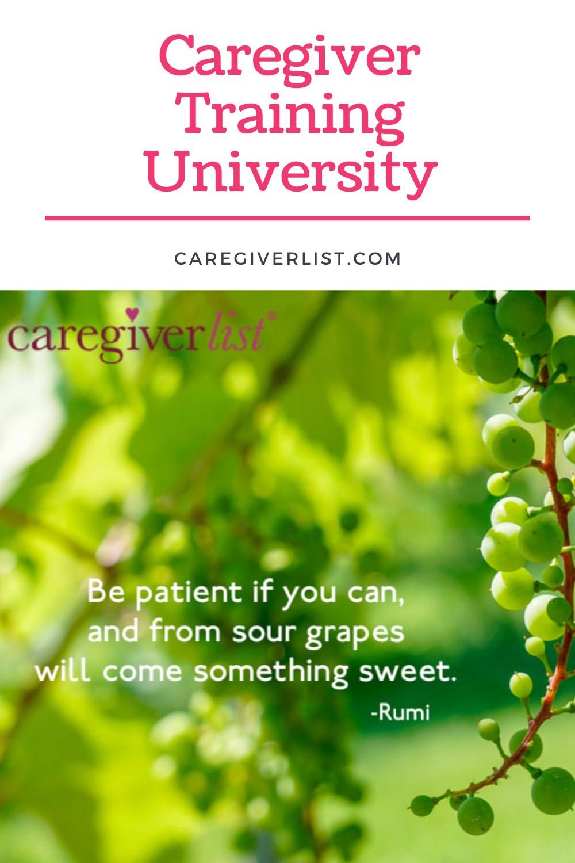 Caregiver Training University in 2020 Senior care