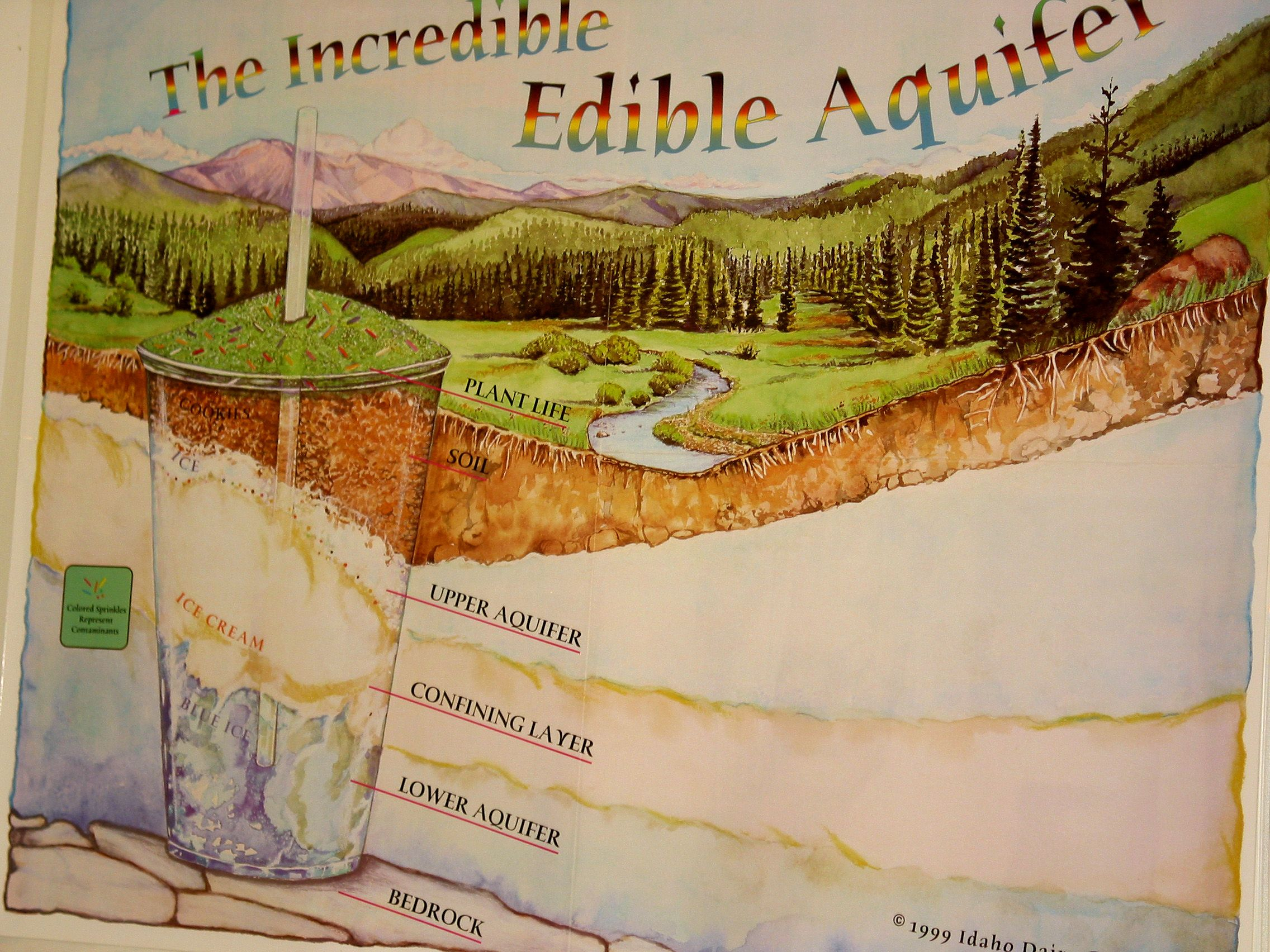 the incredible edible aquifer activity to demonstrate how canals
