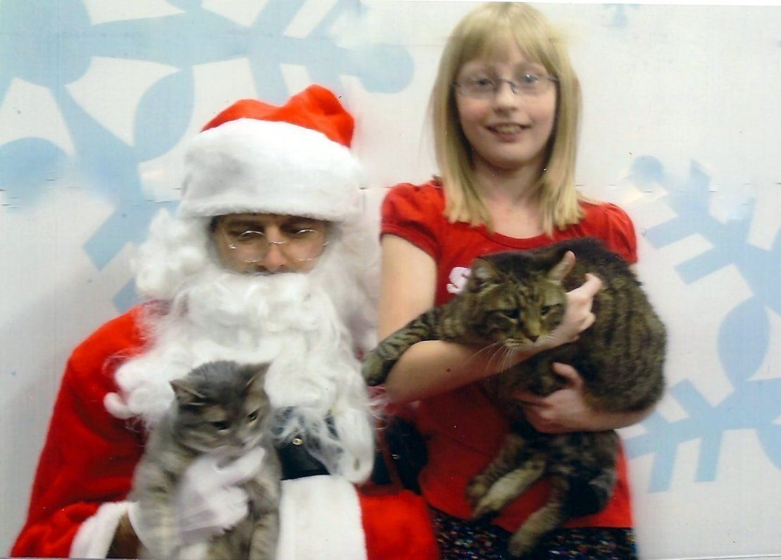 Shelby, Jackson and Cloudy attempting to pose with Santa....Good Job Shelby!