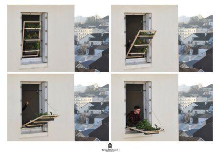 Window Shutter as Micro Urban Garden