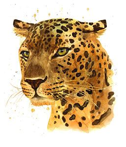 Cats Painting - Leopard Gaze by Alison Fennell