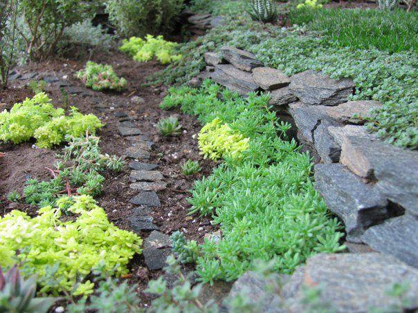 Amazing Miniature Gardens   Just Imagine – Daily Dose of Creativity