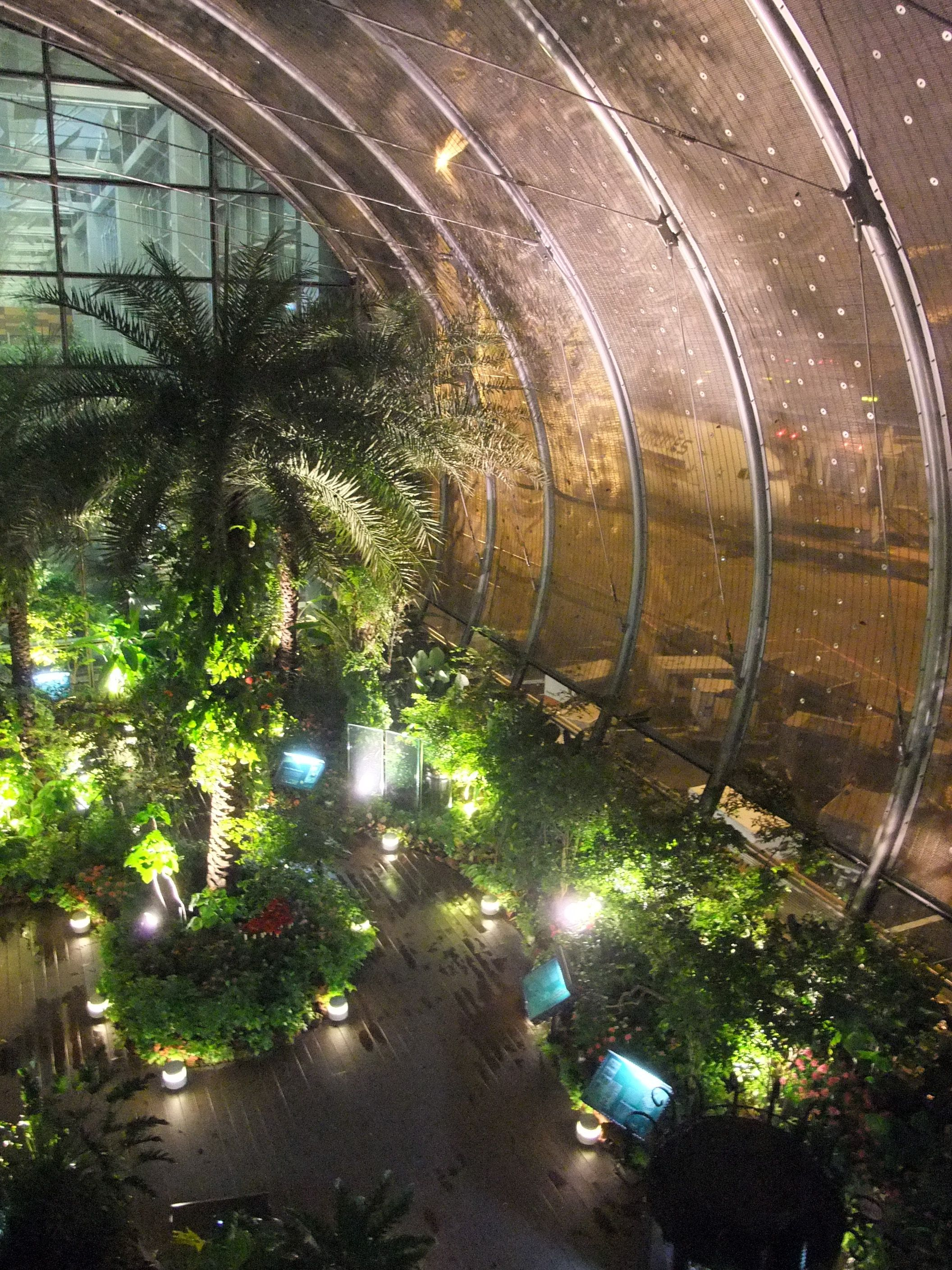 Changi#airport#singapore Terminal 3 butterfly garden#comeflywithme ...