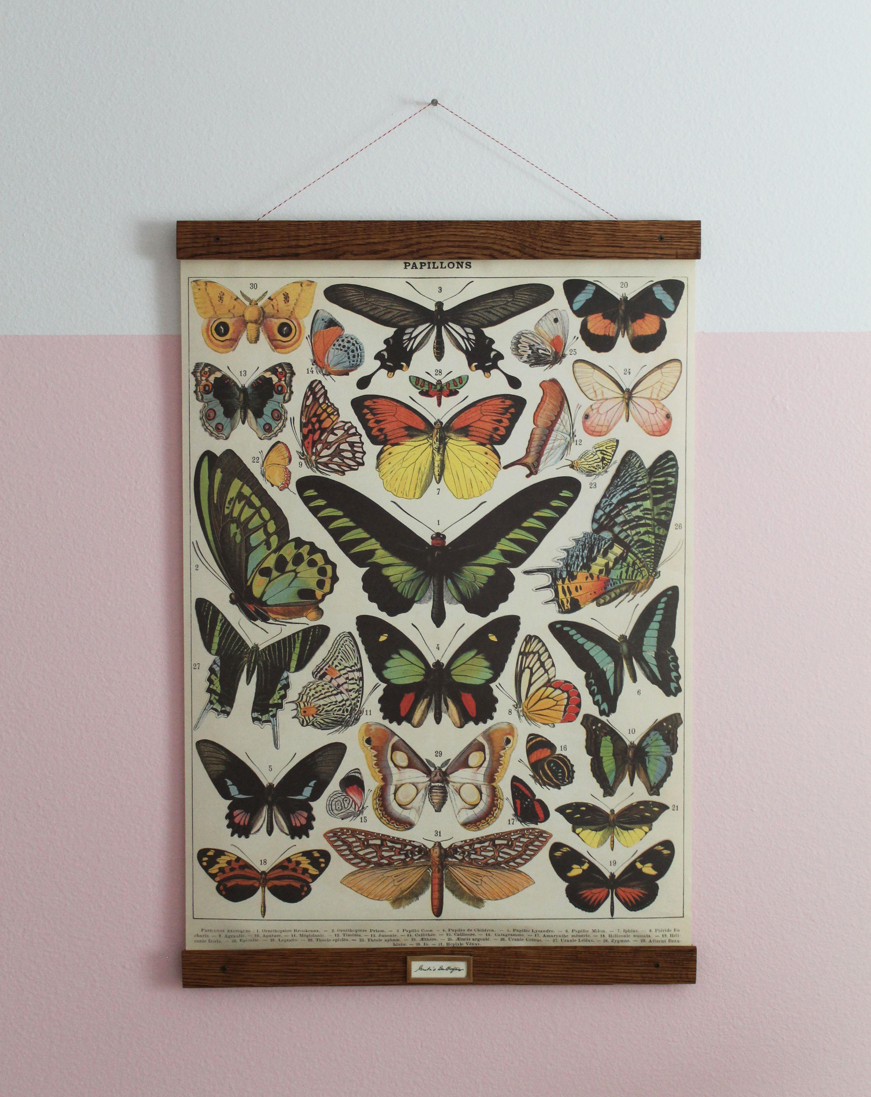 DIY Vintage Poster Frame for Greta\'s Butterflies | Hanging frames ...
