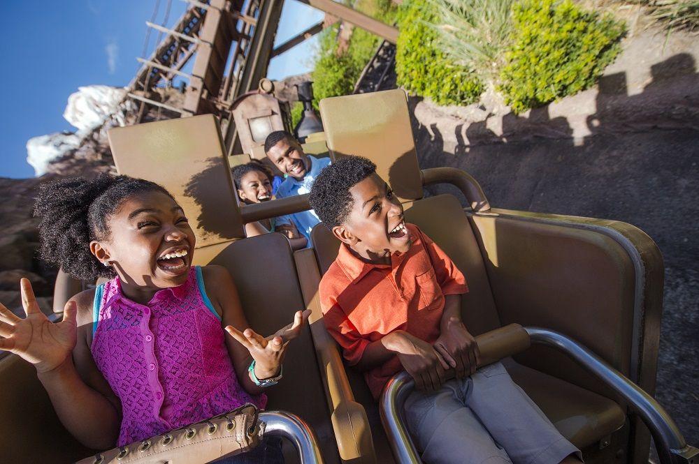 Ride Photos at Walt Disney World