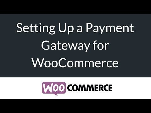 Payment Gateways for WoCommerce (PayPal, Stripe) - eCommerce Beginners Series - YouTube