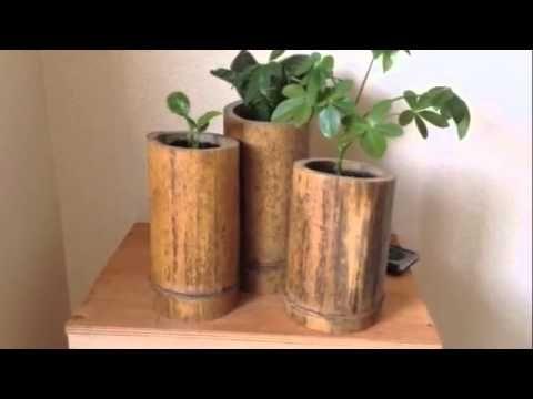 D I Y Easy Bamboo Planter Ideas Bamboo Planter Bamboo Diy