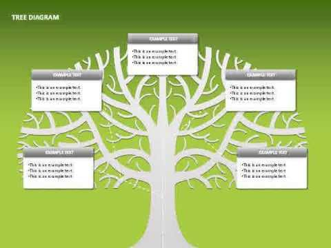 Tree diagram youtube powerpoint diagrams videos pinterest tree diagram youtube ccuart Images