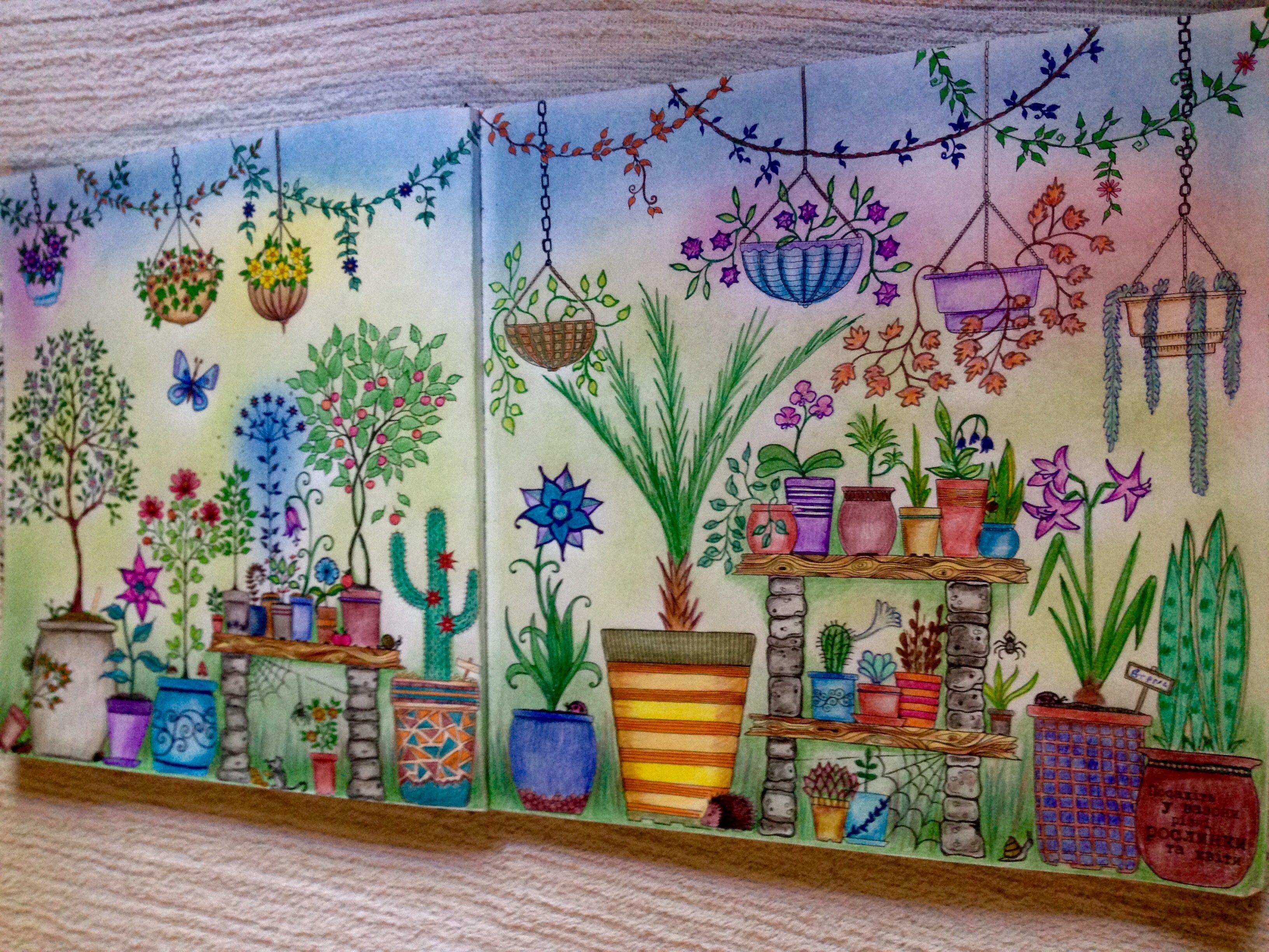 Coloring Book Secret Garden Johanna Basford Secret Garden Coloring Book Coloring Book Art Johanna Basford Secret Garden