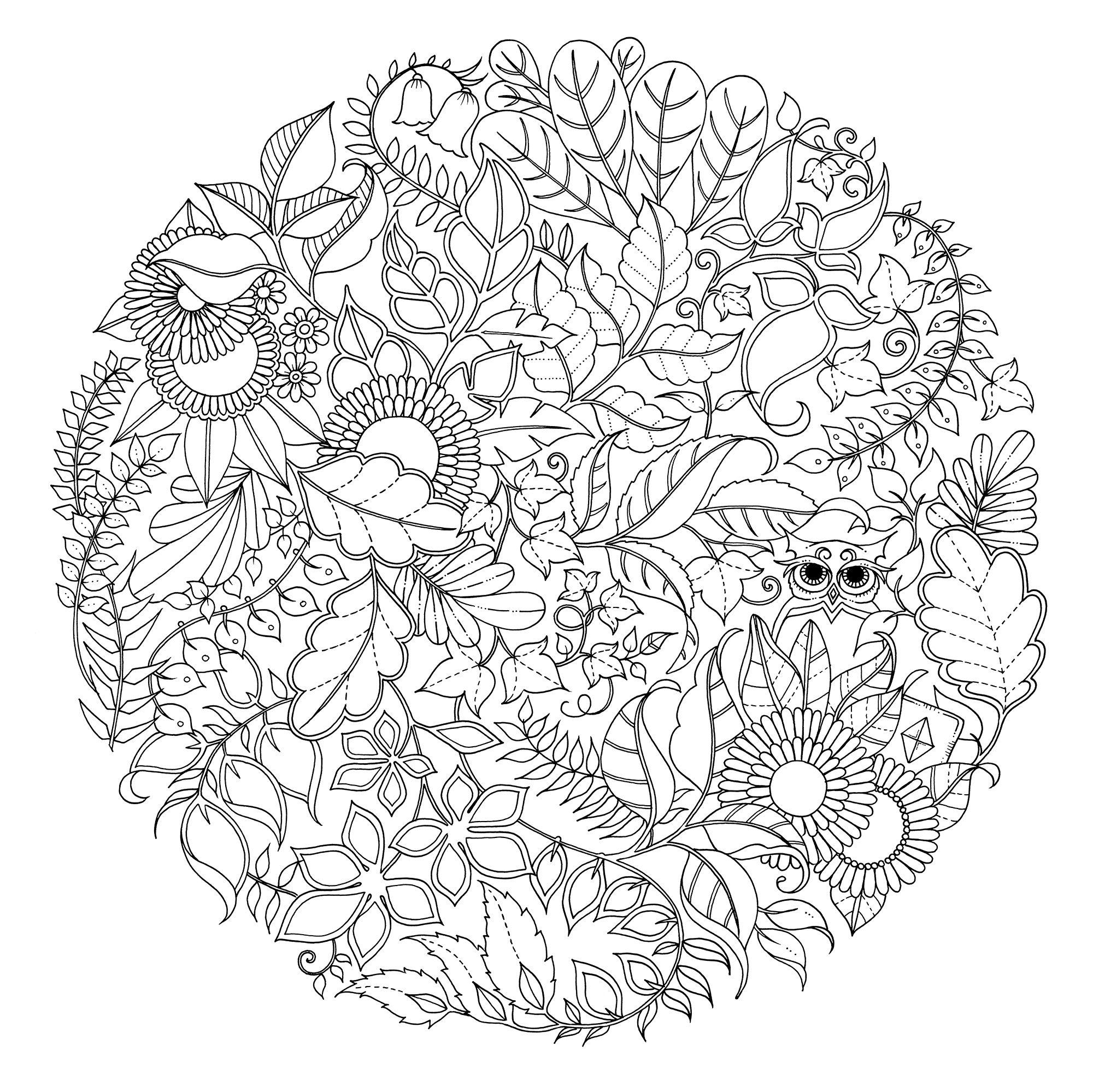 Wald-mandala  Malvorlagen, Muster malvorlagen, Mandala ausmalen