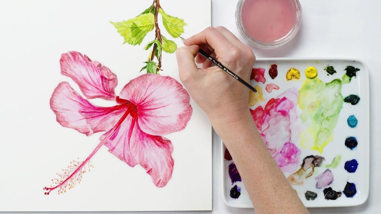 How To Paint A Realistic Hibiscus Flower In Watercolour With Anna