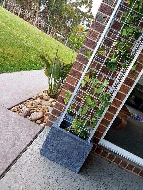 Silver trellis vertical garden, polished concrete planter; large rectangular garden, patio balcony or outdoor planter box is part of Large garden Patio - policy ref shopinfo policies leftnav