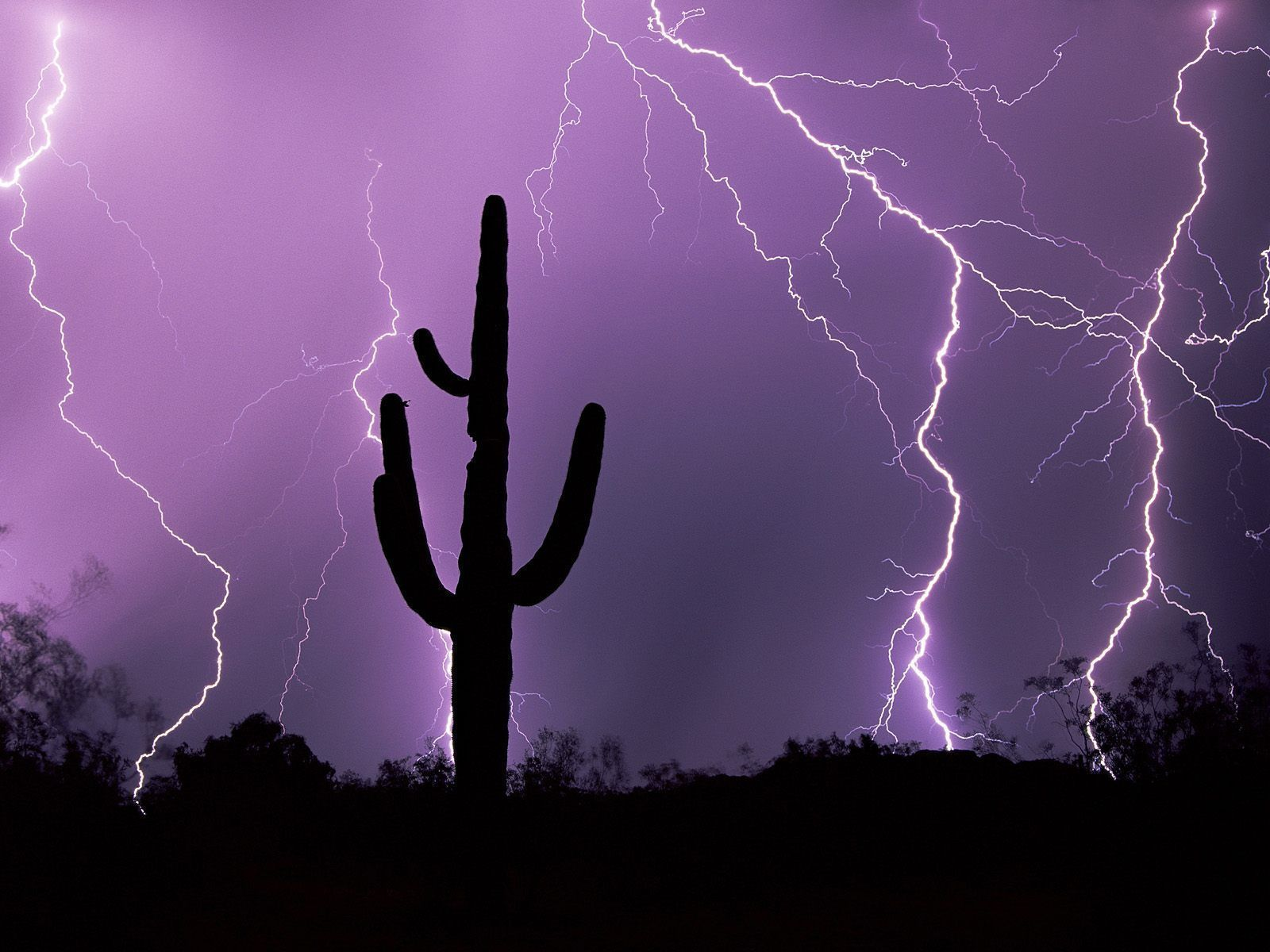 an electrical storm over tucson az is a very common occurance