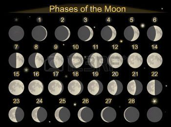 moon phase: Vector illustration set icons phases of the ...