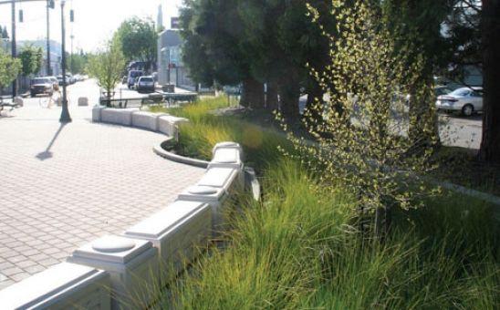 Sandy Boulevard Streetscape | Nevue Ngan Associates, Portland, Oregon
