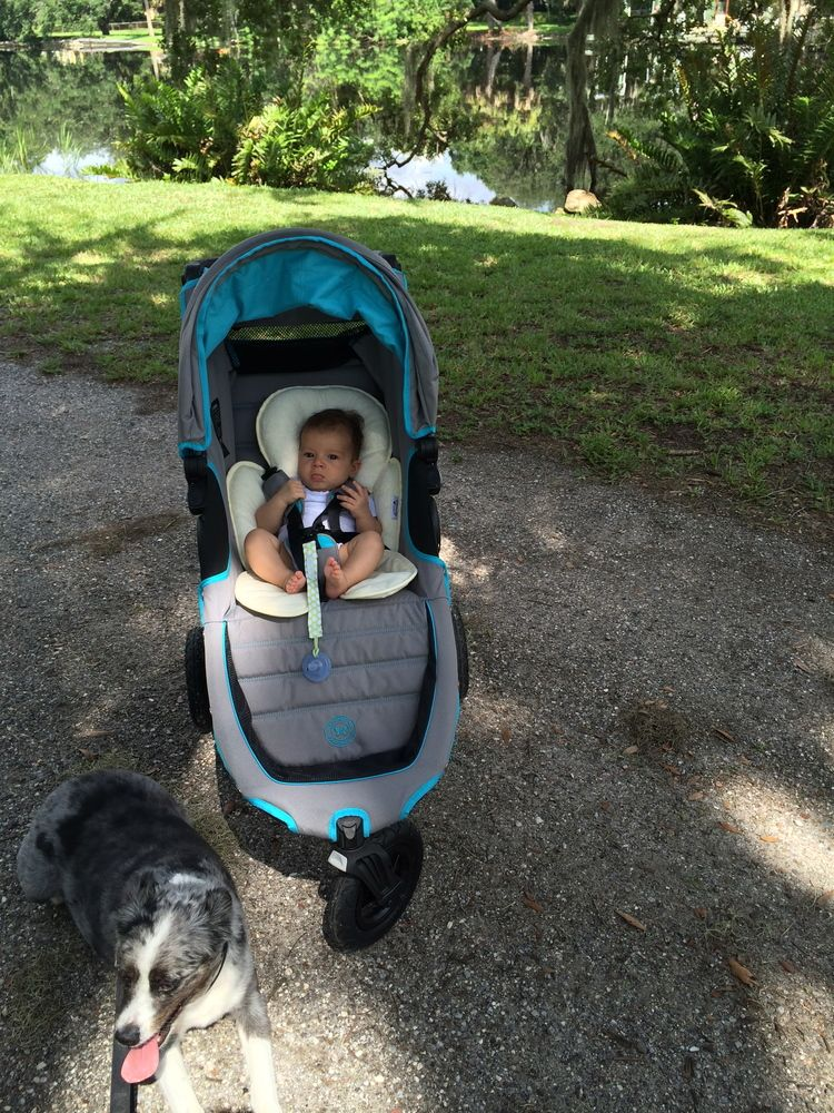 Baby Jogger City Mini Gt By The Honest Co Baby Plans