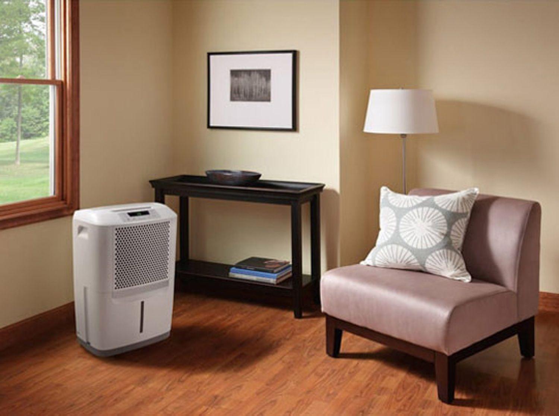 Inspirational Dehumidifier for Basement Apartment