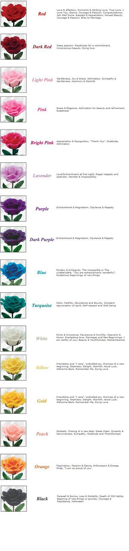 Rose color meanings by kawaii panda aru524 on deviantart rose color meanings by kawaii panda aru524 on deviantart biocorpaavc Images