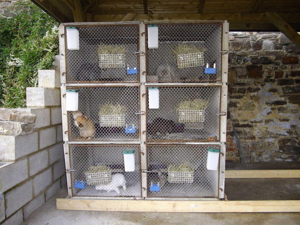 Les lapins de yaya elevage et habitat clapier lapins for Abreuvoir lapin fait maison