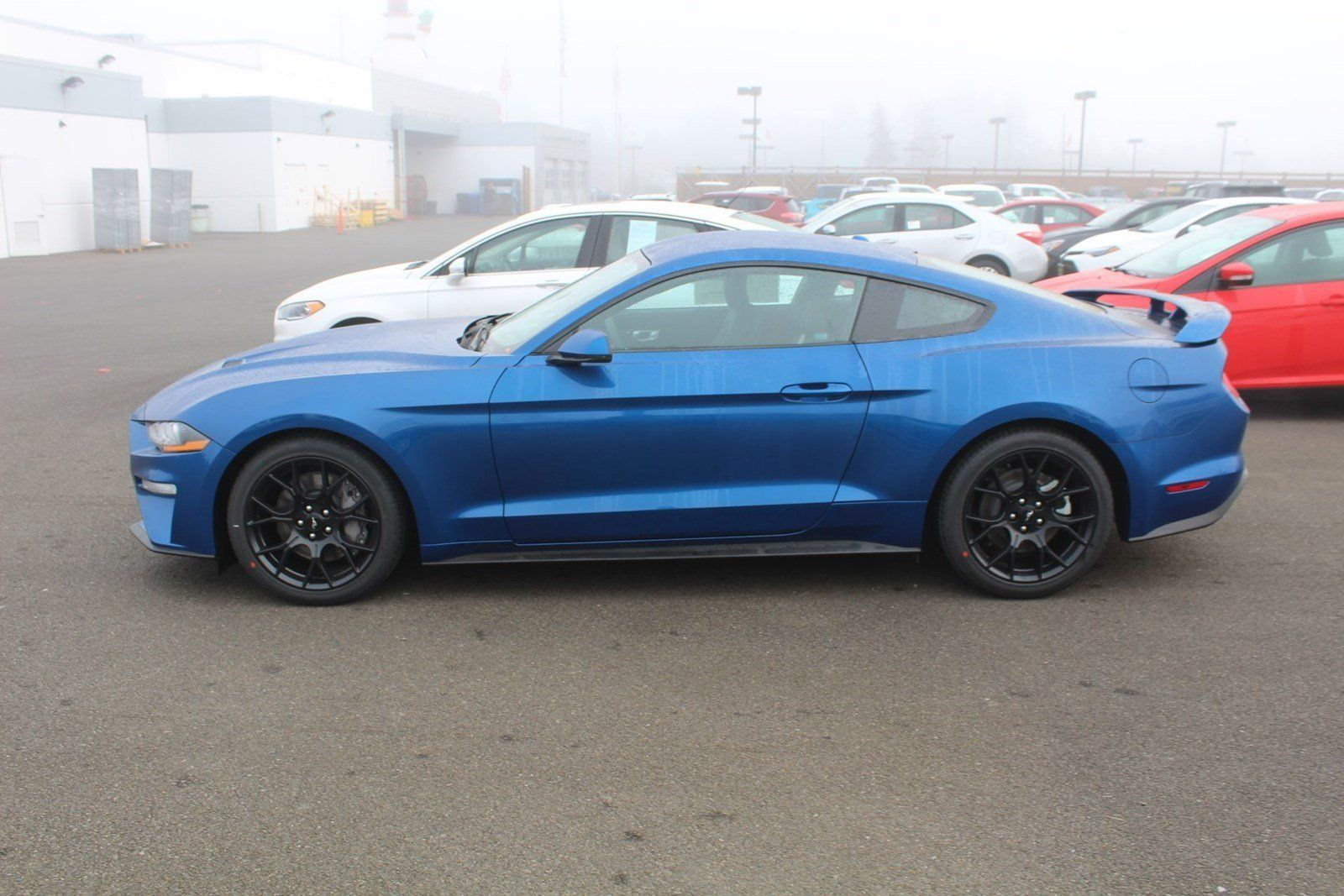 New 2018 ford mustang premium coupe for sale near you in tacoma wa