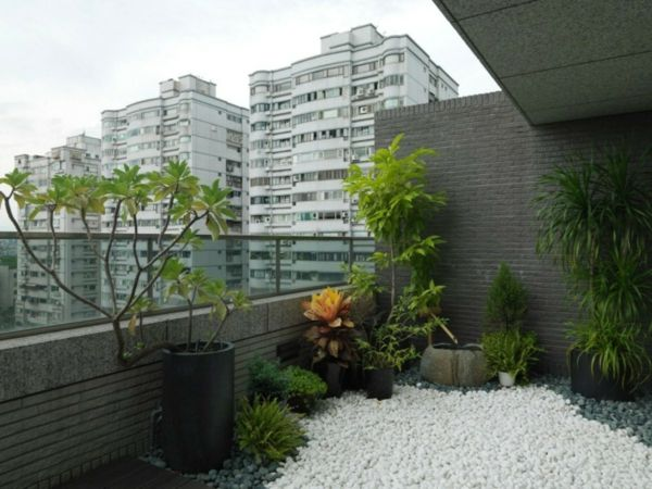 Balkon Asiatisch balkon bepflanzen praktische tipps und wichtige hinweise balcony