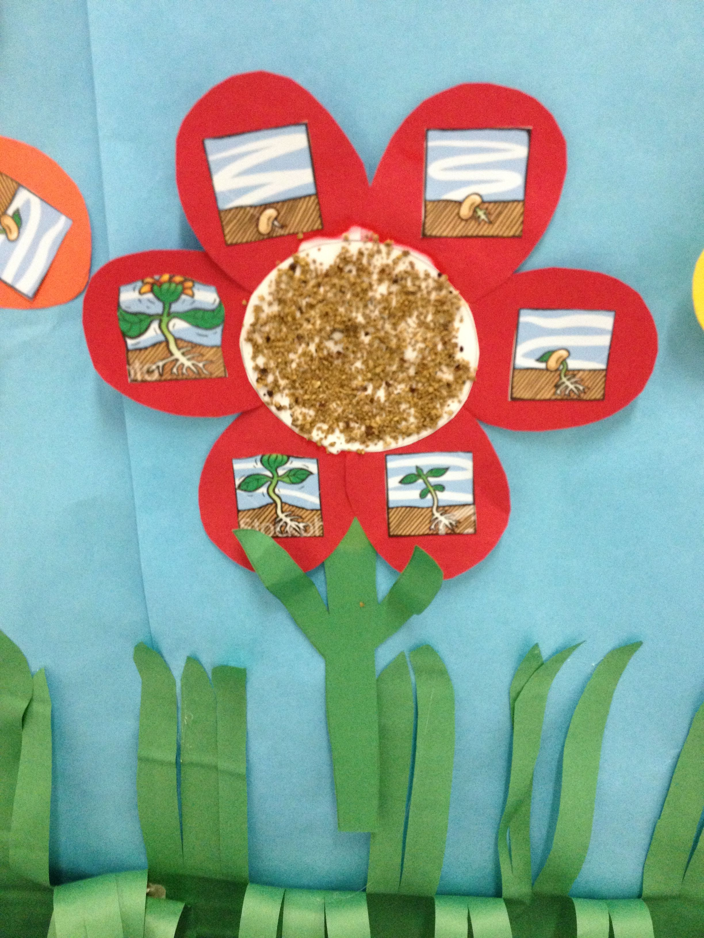 Plant Cycle Craft Here Is A Fun Way To Display The Plant Cycle For Your Spring Garden The