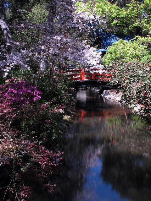 Descanso Japanese Garden Beautiful gardens, Garden