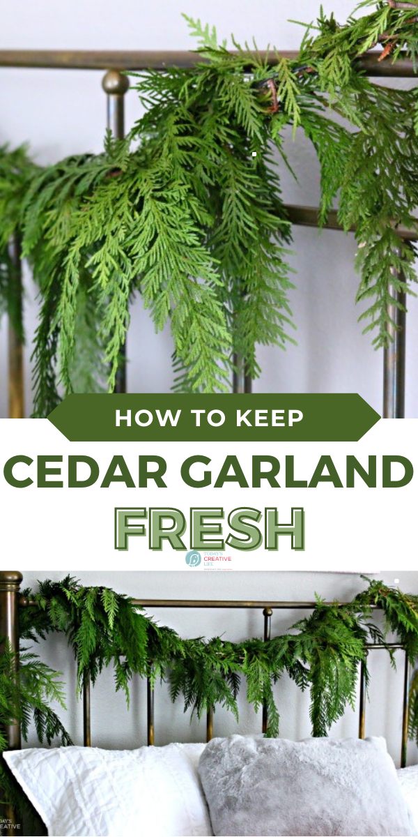 How To Keep Garland Fresh In 2020 Best Christmas Recipes Real Christmas Tree Christmas Fun