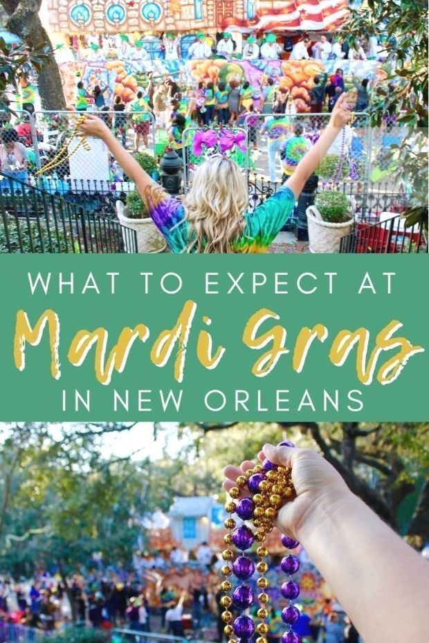 WHAT TO EXPECT AT MARDI GRAS IN NEW ORLEANS  The Republic of Rose  WHAT TO EXP