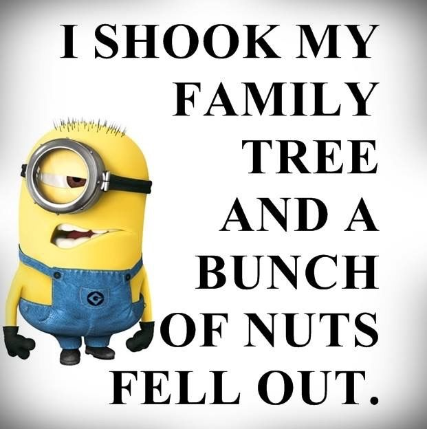 A Bunch Of Nuts Fell Out God Bless My Family Tree Minions Funny Minion Jokes Funny Minion Quotes