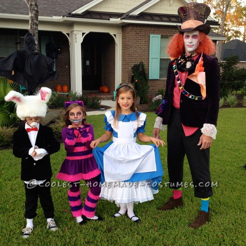 Awesome Family of Six Alice in Wonderland Group Costume - 2