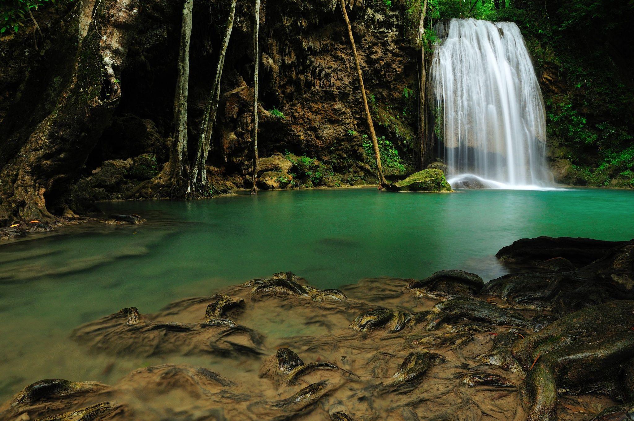 The Root - Location : Erawan waterfall Kanchanaburi province Thailand