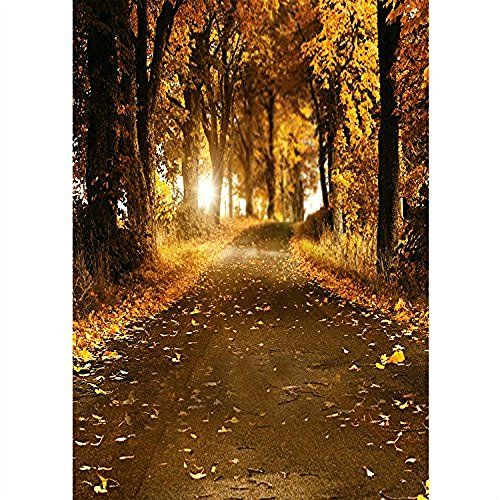 Professional Scenic Photography Backdrops 5x6 5ft Golden Autum Photo Backgrounds Digital Printed Http Www Ama Autumn Scenery Autumn Scenes Woods Photography