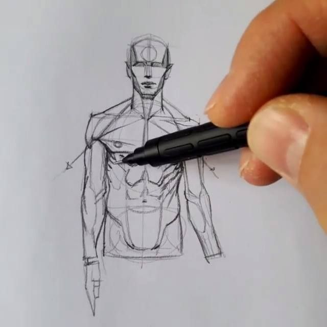 How to draw basic human anatomy by Ferhat Edizkan Art instagram.com/edizkan  veri-art.net ...