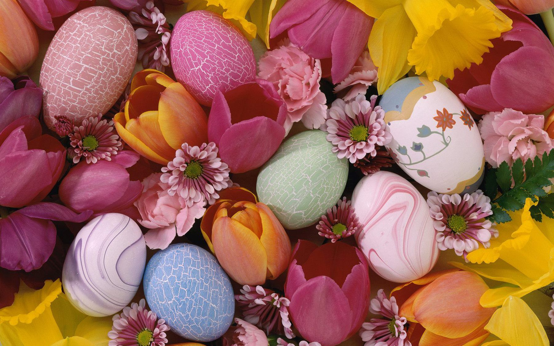 1000+ images about Easter Wallpapers on Pinterest | Funny bunnies ...