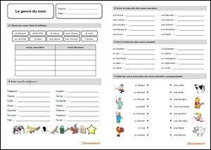 Fiche d'exercices sur le genre du nom au format PDF | Genre et nombre, Le genre, Exercice ce2