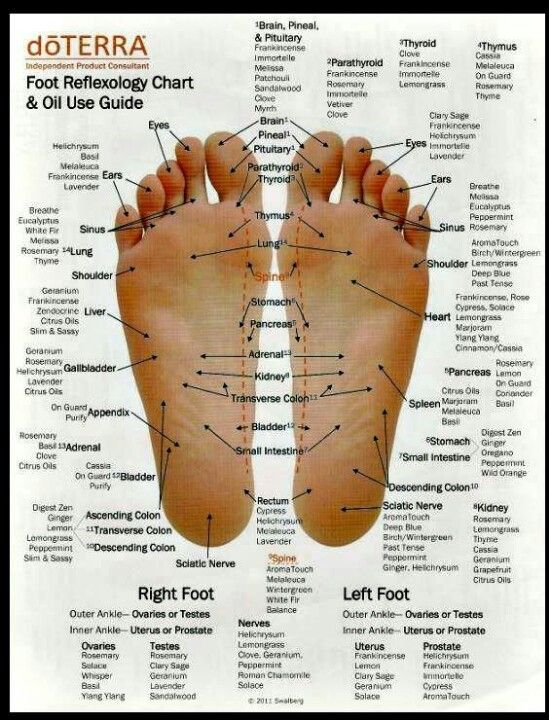 Foot reflexology chart and oil use guide natural essential oils diffuser also best doterra images in aromatherapy rh pinterest