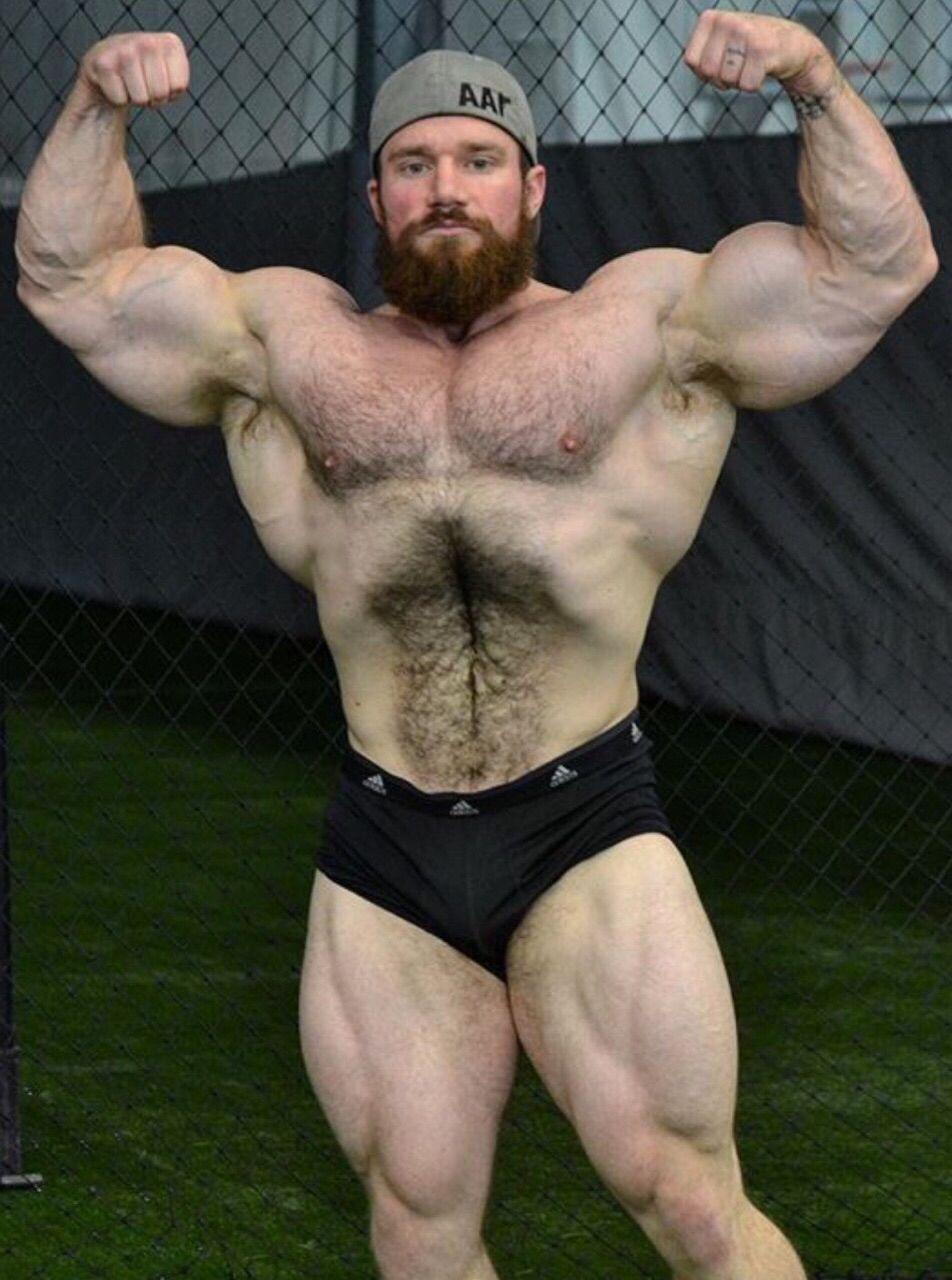 Bodybuilder bear big geno muscle flex pose pumping