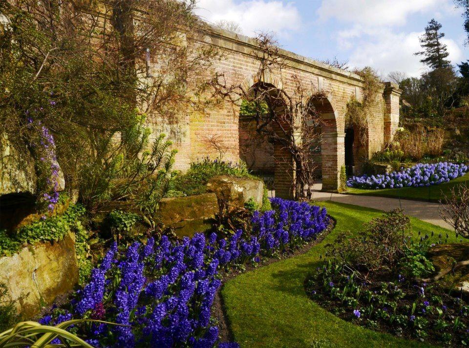 The Blue Garden Hever Castle English Country Gardens Castle Garden British Garden