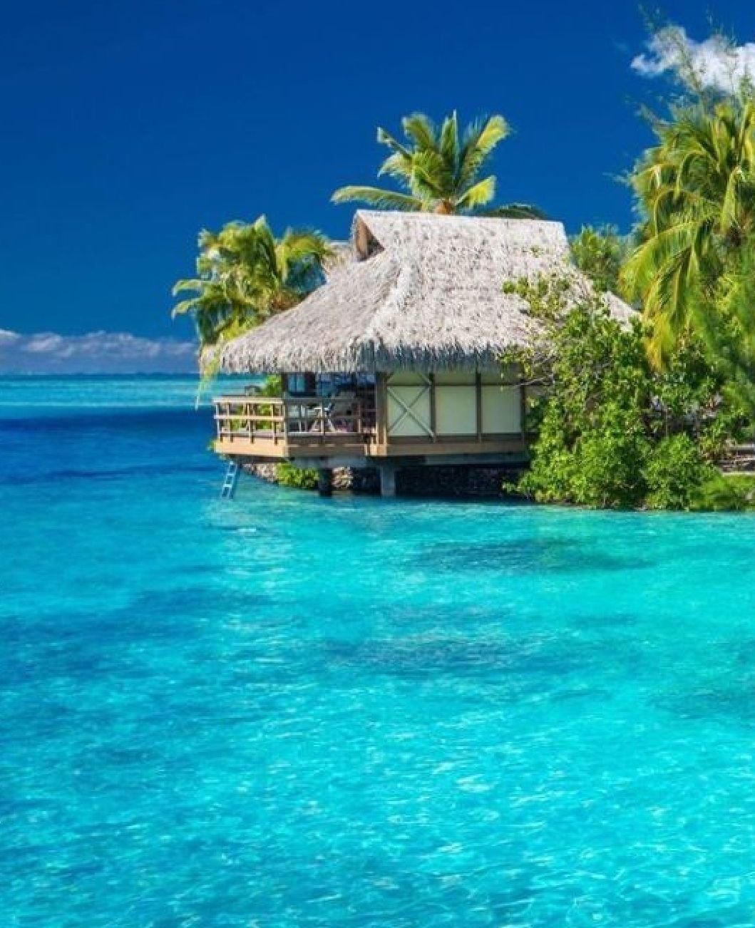 Seychelles Island Beaches: The Islands In The Seychelles Have Some Of The Most