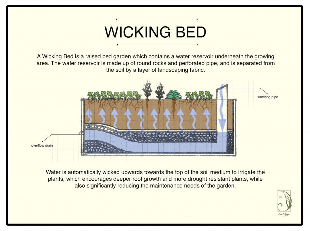 Wicking beds   In the Garden   Pinterest   Gardens, Raised bed and